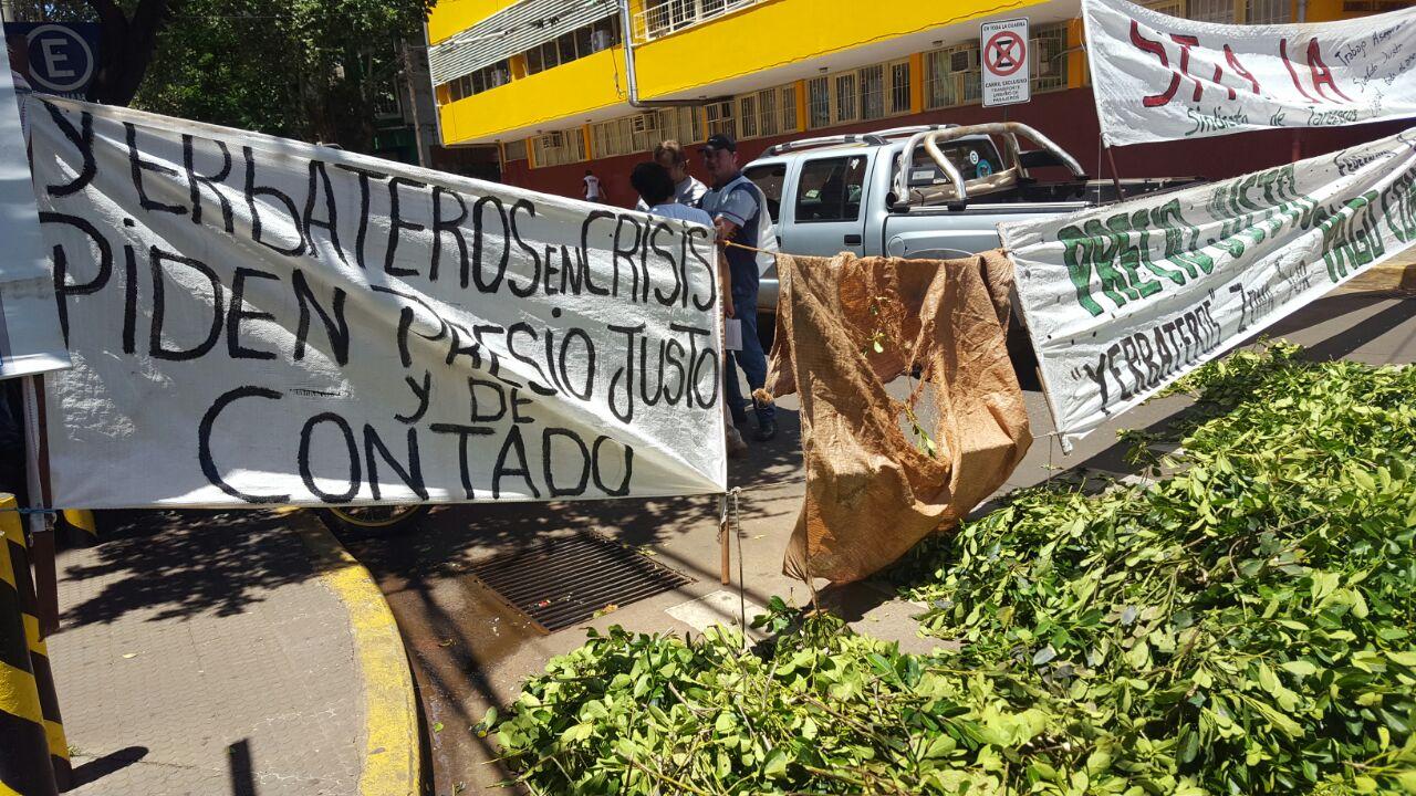 yerbateros-precio