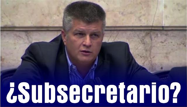 ziegler subsecretario web