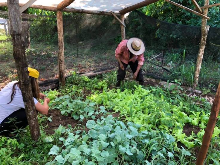 Pequeños productores de Gobernador Roca5